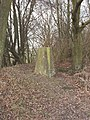 Triangulation pillar in Cowcroft Woods, Botley - geograph.org.uk - 116388.jpg