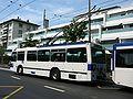 Trolleybus des TL.JPG