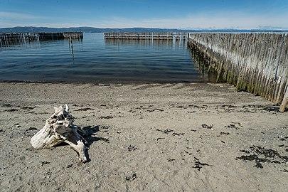 Trondheimsfjorden tre 2.jpg