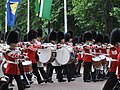 Trooping the Colour 2011 08.jpg
