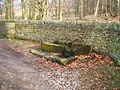 Trough, dry stone wall and copse - geograph.org.uk - 1166391.jpg