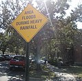 TulaneU4Nov08FloodsHeavyRainSign.jpg