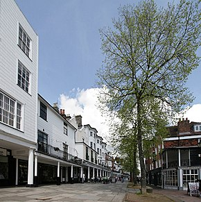 Tunbridge wells pantiles.JPG