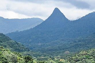 Parque Natural Obô de São Tomé - Image: Typical landscape of the park in Caué district