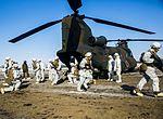 U.S. Marines and JGSDF conduct helo raid 160201-M-RZ020-001.jpg