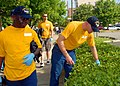 US Navy 090619-N-5574R-020 Sailors assigned to USS George H.W. Bush (CVN 77) pick trash out of a shrubbery in downtown Newport News, Va.jpg