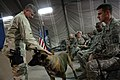US Navy 090909-N-9818V-200 Master Chief Petty Officer of the Navy (MCPON) Rick West pets Branco, a military working dog, as he speaks with military working dog handler Master-at-Arms 3rd Class Chris Shields.jpg