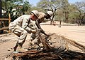 US Navy 110311-N-SN160-130 Seabees sort a load of rebar during the construction of a school.jpg