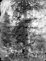 Un home repenjat en un arbre al Bessibèrri Nord.jpeg