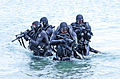 United States Navy SEALs 524.jpg