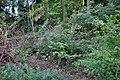 Unterengstringen - neuzeitliche Schanzen 2011-09-06 18-51-16.JPG