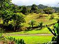 Utuado, Puerto Rico a orillas del Lago Dos Bocas. - panoramio.jpg