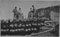 V.M. Doroshevich-Sakhalin. Part I. Prisoners Works. Rafts Assembling.png