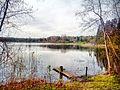 Valdaysky District, Novgorod Oblast, Russia - panoramio (3419).jpg