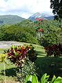 Vallée de Viñales-Paysage (2).jpg