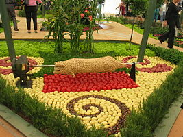 Vegetable sculture at Ellerslie Flower Show.jpg