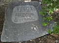 Velox (polar bear) memorial marker.jpg