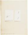 Vespertilio exilis - 1700-1880 - Print - Iconographia Zoologica - Special Collections University of Amsterdam - UBA01 IZ20800107.tif