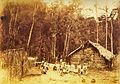 Victor Frond - Casa da Colônia Santa Leopoldina.jpg