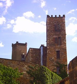 Neuville-sur-Saône - The towers of the old château of Vimy