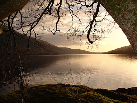 Loch Lomond in Scotland forms a relatively isolated ecosystem. The fish community of this lake has remained unchanged over a very long period of time. View of loch lomond.JPG