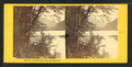 View on Profile Lake, Franconia Mts., N.H, by Bierstadt Brothers.png