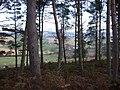View towards Loanend - geograph.org.uk - 633092.jpg