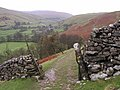 View up Littondale - geograph.org.uk - 10824.jpg