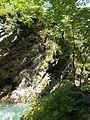 Vintgar gorge (20068312953).jpg