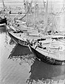 Vissersschepen aan de steiger in de haven van IJmuiden, Bestanddeelnr 252-0663.jpg