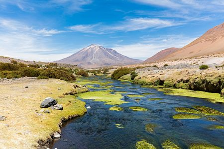 View of the San Pedro river with the Paniri volcano in the background, El Loa Province, Antofagasta Region, northern Chile, close to the Bolivian border. Parini is a 5,960 metres (19,550ft) high stratovolcano with a prominence of 1,653 metres (5,423ft).