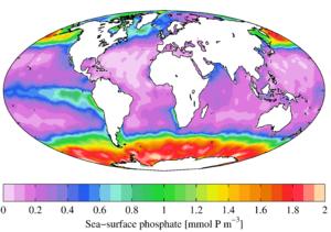 World Ocean Atlas - Annual mean sea surface phosphate (WOA 2009)