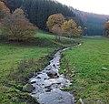 Waldsiepen (Vorwald).jpg