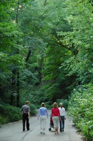 Clintonville, Columbus, Ohio - Walhalla, a ravine in Clintonville