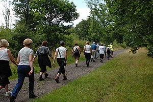 English: Walking for Health in Epsom, England....