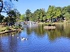 Ward's Lake.jpg