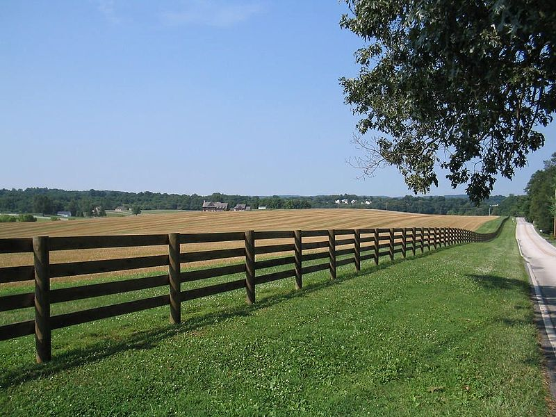 Photo of fence separating fields from a road