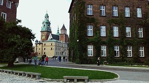 Wewel w Krakowie.jpg
