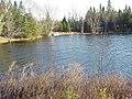 Whitestone Lake (5149375878).jpg