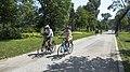 Wien 22 Donaupark ca.jpg