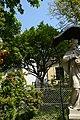 Wiener Naturdenkmal 773 - Kornelkirsche (Döbling) d.JPG