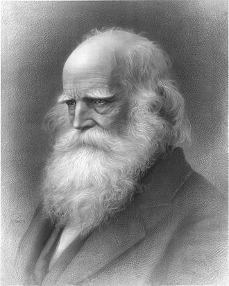 1878 in poetry - William Cullen Bryant, from a lithograph published in 1876