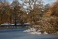 Winter Pond IMG 8982 - panoramio.jpg