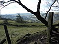 Wire fence,(broken) and stile - geograph.org.uk - 1735598.jpg