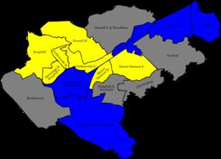 2006 Woking Borough Council election