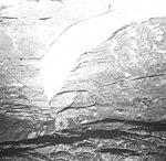 Wolverine Glacier, terminus of mountain glacier, September 2, 1970 (GLACIERS 6942).jpg