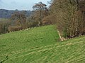Woodland above Turville - geograph.org.uk - 295216.jpg