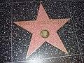 Woody Woodpecker HWoF Star.jpg