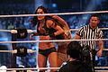 WrestleMania XXX IMG 5117 (13771361874).jpg