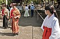 Yabusame Kamakura.jpg
